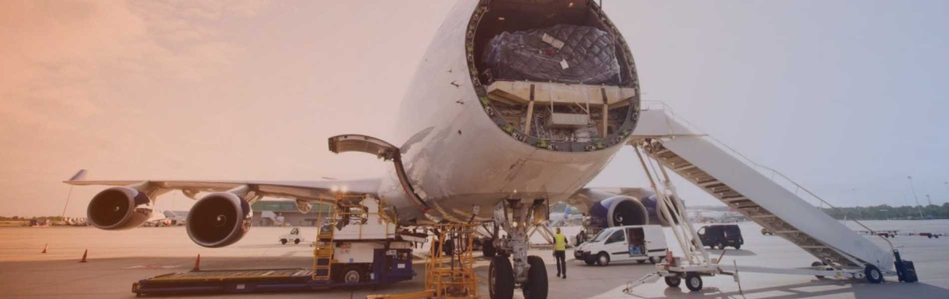 MANAGEMENT AND SOLUTIONS IN<br/>AIR CARGO SERVICES